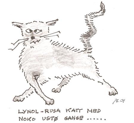 lynol-katte